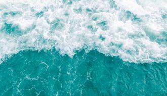 Khó mà giải mã được những tiếng vọng ngoài đại dương xanh