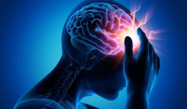 Vì sao bộ não có thể lưu trữ ký ức?